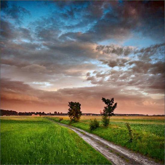 paysage_tiram_978