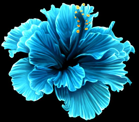 tubes_fleurs_tiram_514