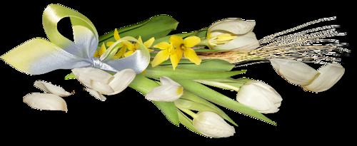 fleurs_paques_tiram_174