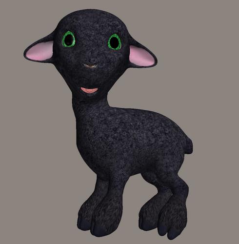 mouton_tiram_42