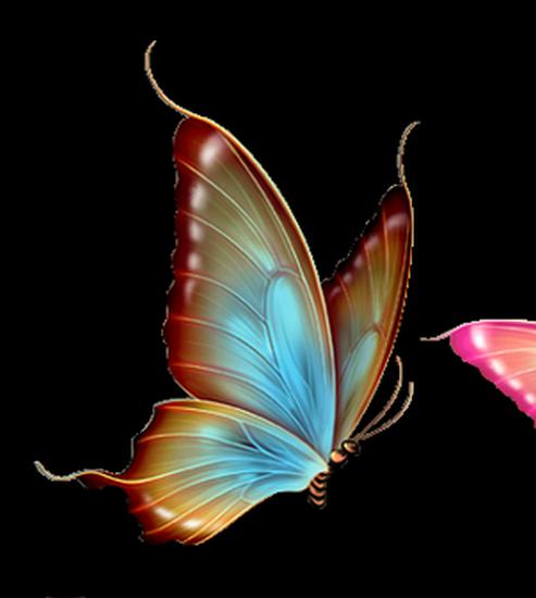 tubes_papillon_tiram_825