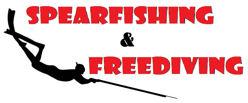 SPEARFISHING AND FREEDIVING