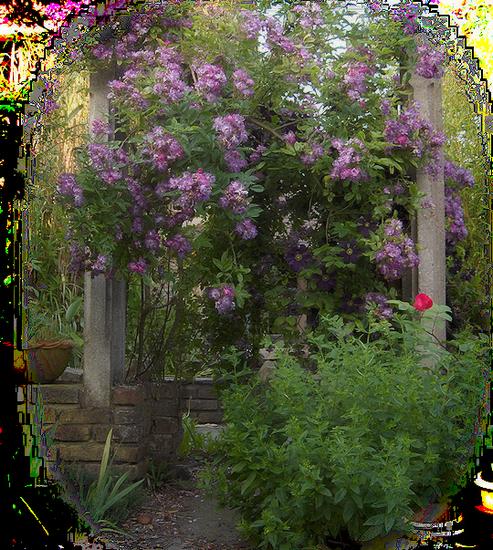 tubes_fleurs_tiram_212