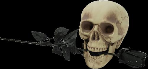 monstre-halloween-tiram-171