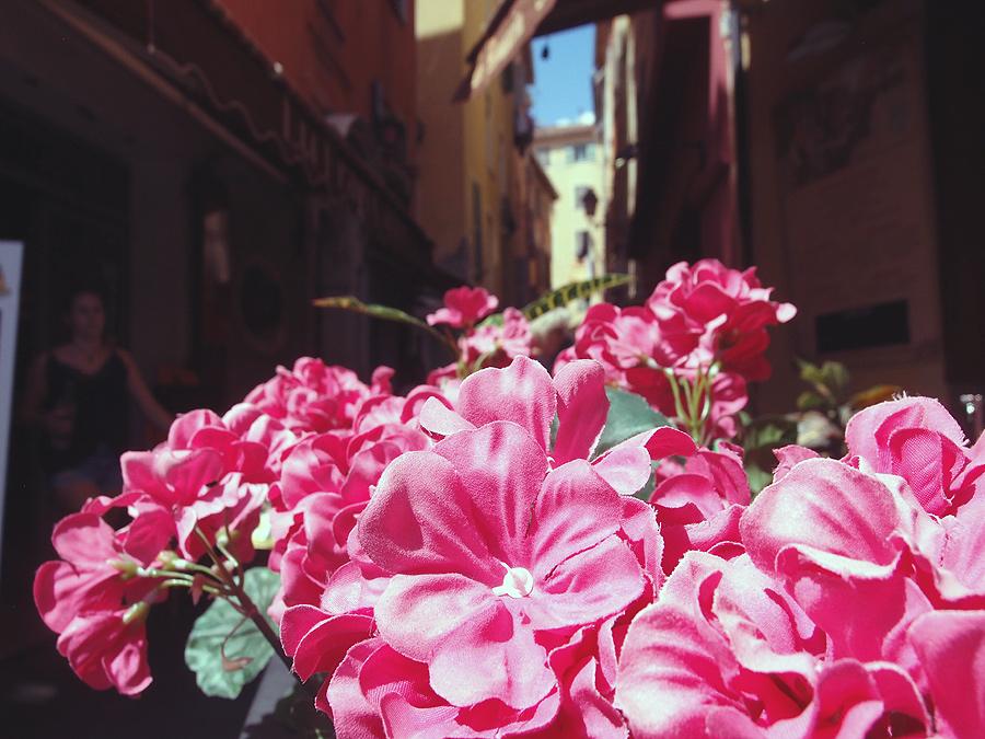 Vieux Nice: люди, моменты, факты. Фотоотчёт.