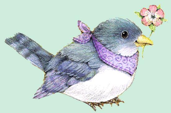 tubes_oiseaux_tiram_193