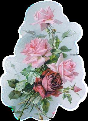 tubes_fleurs_tiram_714