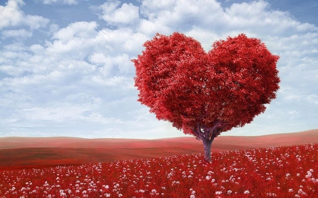Η ζωή είναι αγάπη