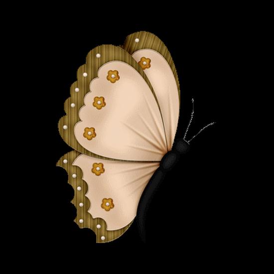 tubes_papillon_tiram_842