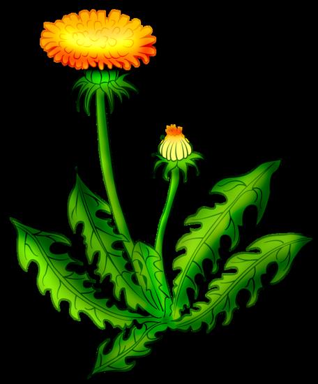tubes_fleurs_tiram_123