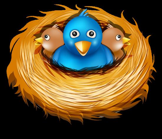 tubes_oiseaux_tiram_164