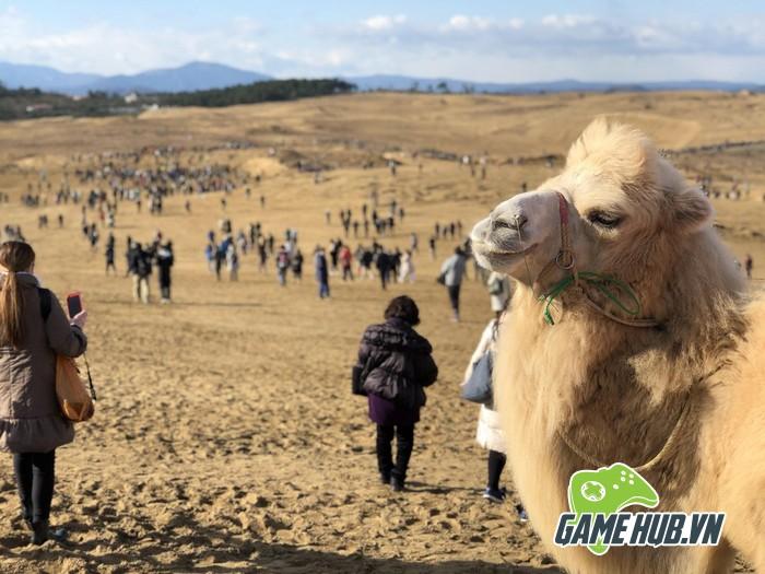 Choáng ngợp trước hình ảnh game thủ Pokemon GO đông như kiến ở Nhật - ảnh 7