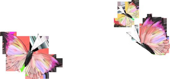 tubes_papillon_tiram_677