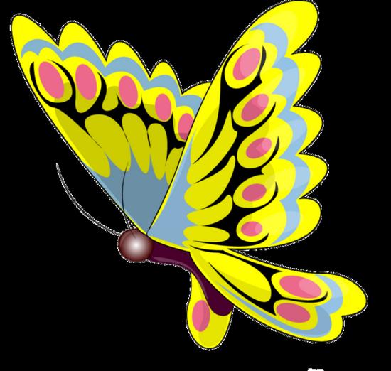 tubes_papillon_tiram_97