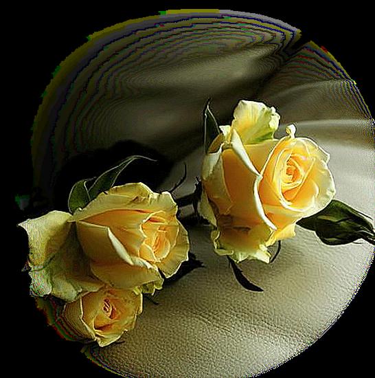 tubes_fleurs_tiram_382