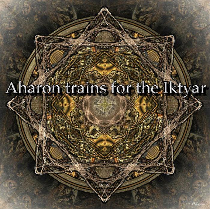Aharon Trains for the Iktyar [Training|Solo] Aharon_trains_for_the_Iktyar