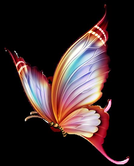 tubes_papillon_tiram_593