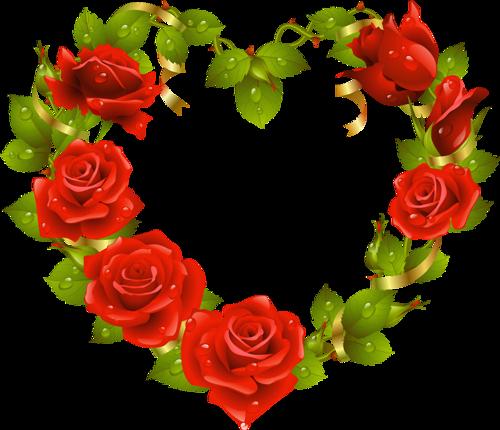 tubes_fleurs_saint_valentin_tiram_186