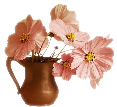 tubes_fleurs_tiram_674