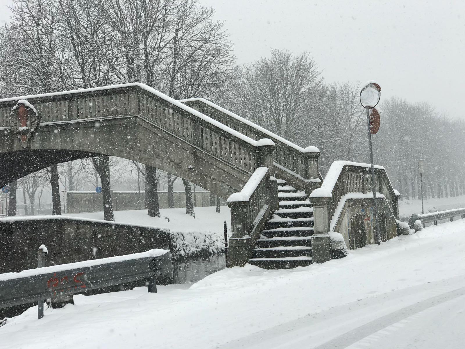 Intensa nevicata in Viale Repubblica