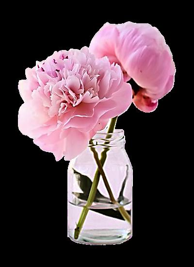tubes_fleurs_tiram_678