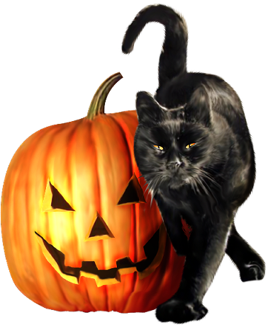 animaux_alloween_tiram_179