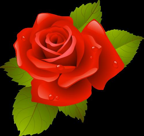tubes_fleurs_saint_valentin_tiram_182
