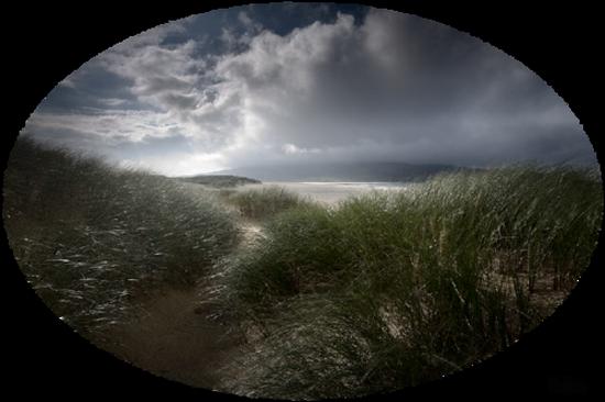 paysage_tiram_885
