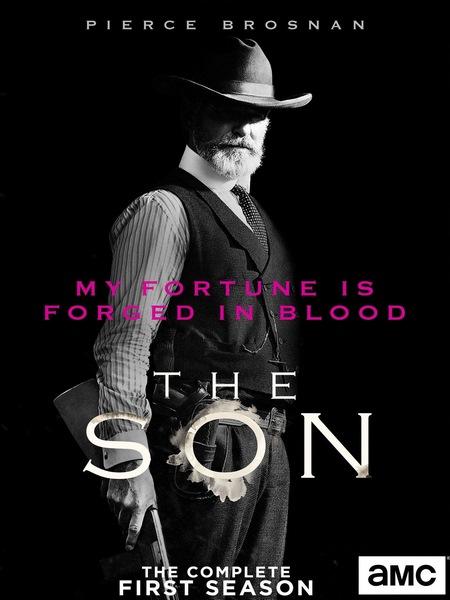 The Son Season 1 DVDRip x264-REWARD