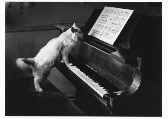 Abecedario Musical Gato_zpsqn5icial