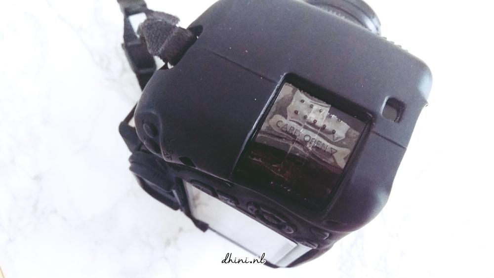 2017_Canon600_D1aaa