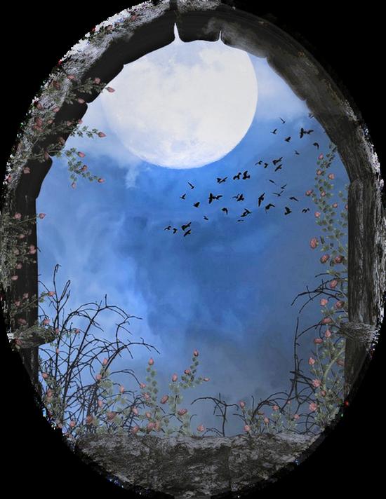 paysage-halloween-62