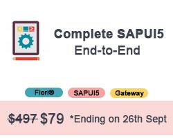 Complete SAPUI5
