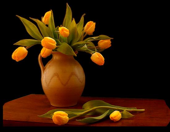 tubes_fleurs_tiram_131