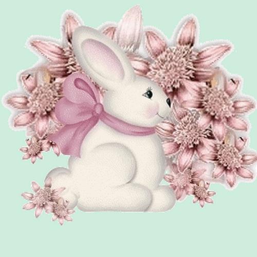 lapins_paques_tiram_258