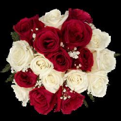 tubes_fleurs_saint_valentin_tiram_135