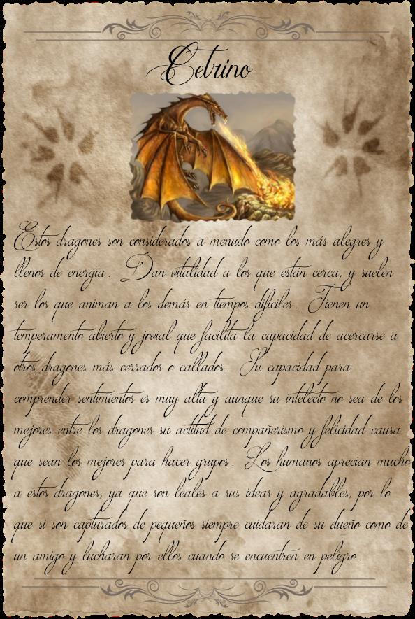 Dragonario Pagina_9_Cetrino