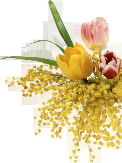 tubes_fleurs_tiram_84