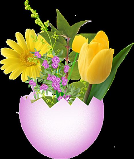 fleurs_paques_tiram_18