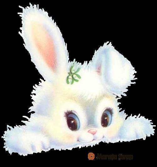 lapins_paques_tiram_1052