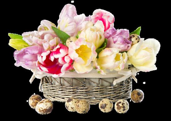fleurs_paques_tiram_89