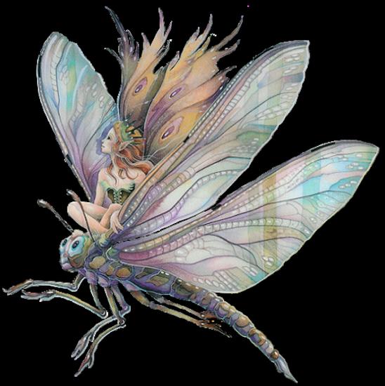 tubes_fairy_tiram_491