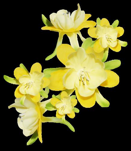 tubes_fleurs_tiram_571