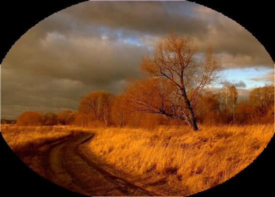 paysage_tiram_667