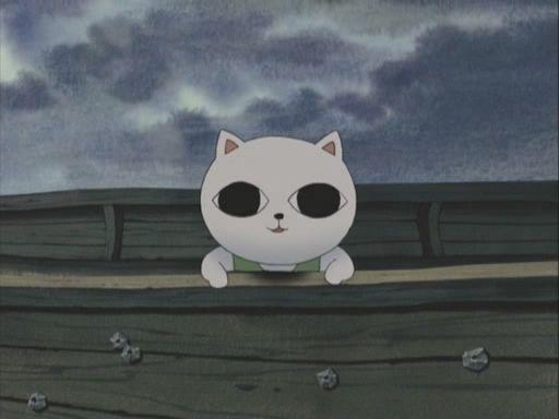 cat_soup_2056