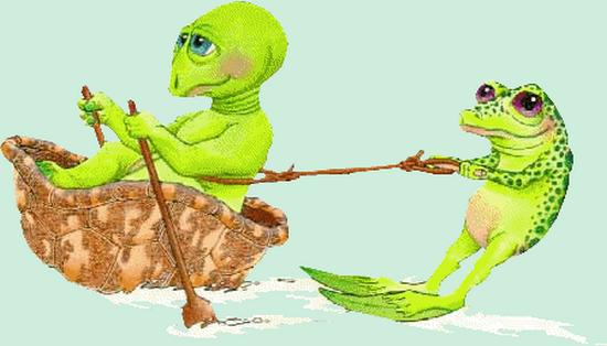 grenouille_tiram_125