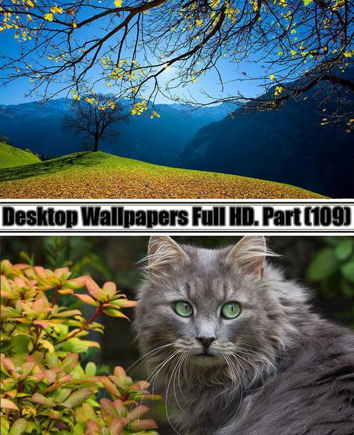 Desktop Wallpapers Full HD. Part 109
