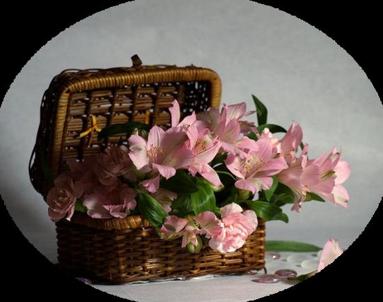 tubes_fleurs_tiram_438