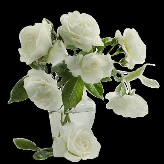 tubes_fleurs_tiram_483