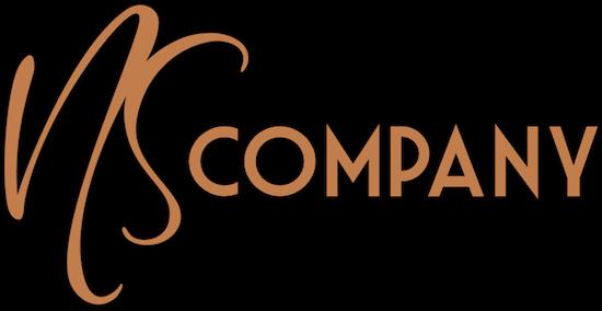 NS Company Logo